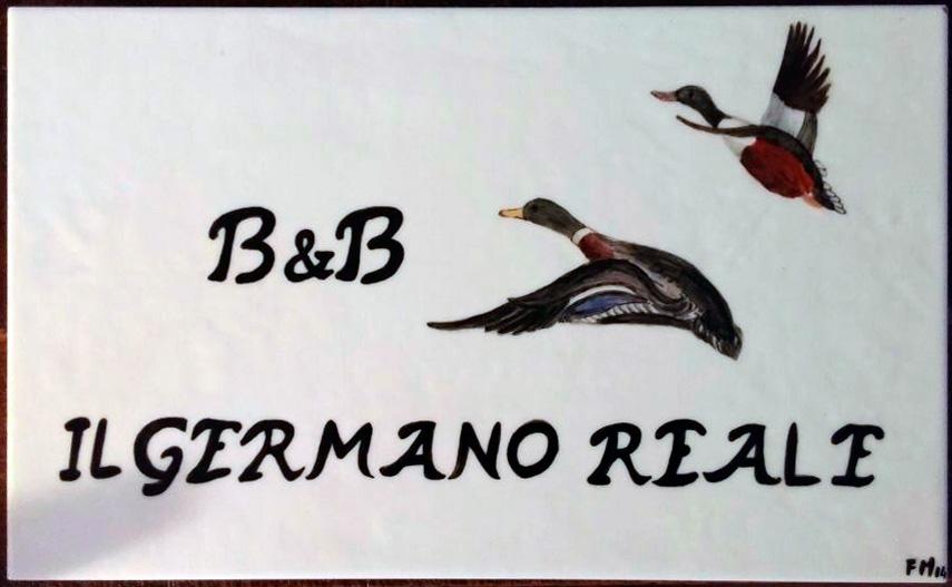 foto-logo1